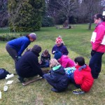 Broomley Bees meadow project